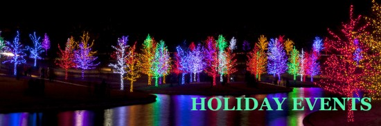 Trees tightly wrapped in LED lights for the Christmas holidays r